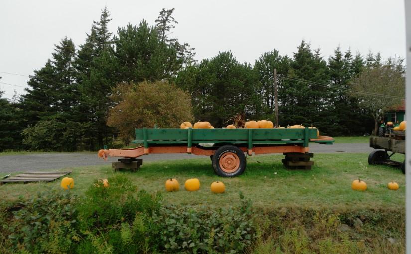 Hillgrove – Acadia