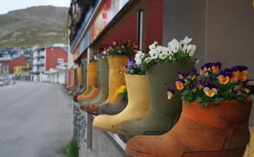 Seetag V-Nordkap-Honningsvåg